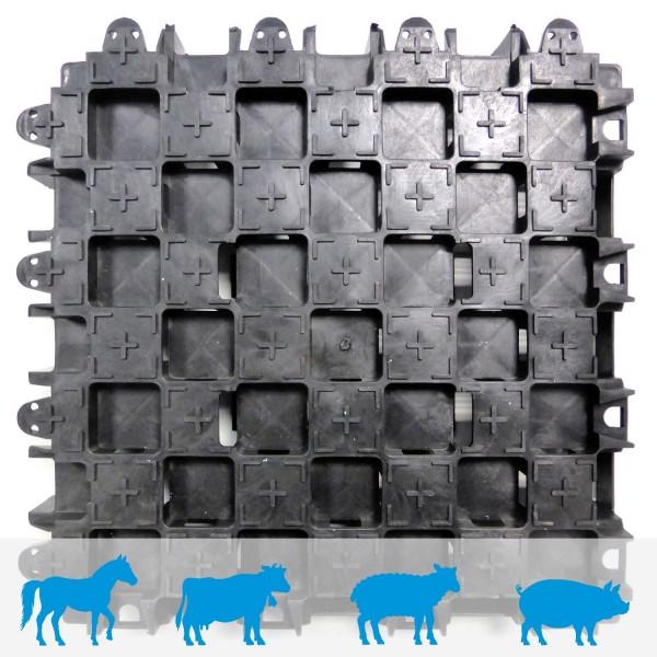 Paddockplatte PP60 · 400 x 400 x 60 mm · Verlegung ohne Unterbau · Horizontale & vertikal Drainage · Rutschhemmende Profilierung · 16 Integrierte Ankerelemente · 16 Kopplungspunkte · 3D Verbindungsmechanik